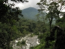 Oeganda_Rwenzori_Mountains_-_IMG_2961.jpg