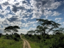 Oeganda_-_Queen_Elizabeth_National_Park_-_IMG_0760.jpg